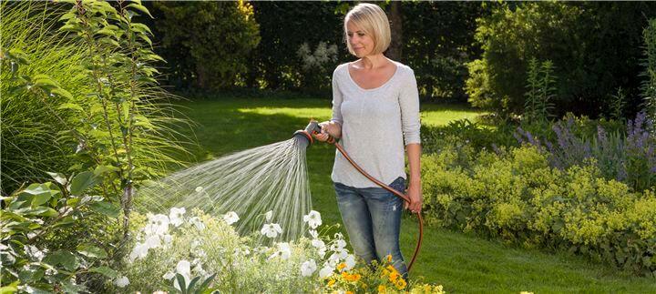 Градинарство и златните правила на доброто поливане!