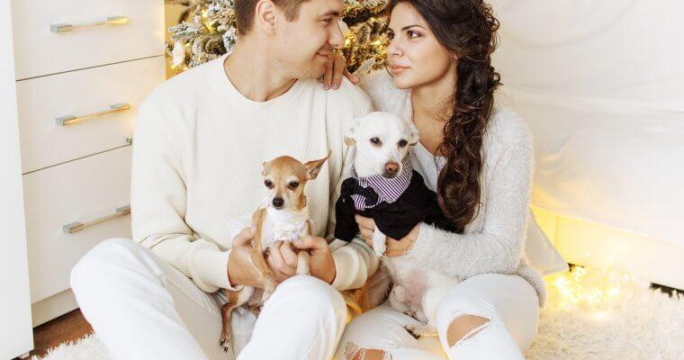 Пет полезни съвета за отглеждане на кучета в домашни условия