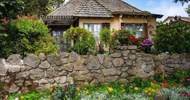 Правилна грижа за двора и градината през лятото